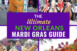 Ultimate Mardi Gras Guide from a Local